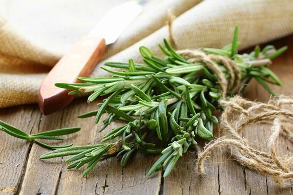 زيت السمسم مكون مثالي لحماية الشعر الاسود من الشيب وتنعيمه wsf_klyl_ljbl.jpg