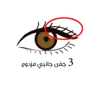 https://www.aljamila.com/